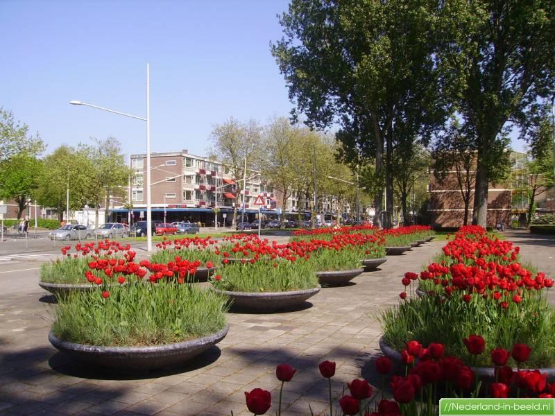 Rotterdam > Almondestraat luchtfoto's / foto's | Nederland ... Almondestraat Rotterdam